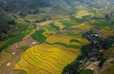 ruong-bac-thang-tu-le  pystravel.com