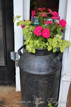 Milk Pail Planter I want one Old Milk Jugs, Milk Pail, Container Plants, Container Gardening, Lawn And Garden, Garden Art, Milk Can Decor, Vintage Milk Can, Pot Image