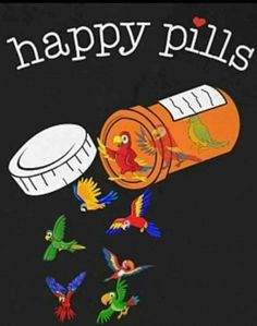 My happy pills are parrots! My happy pills are parrots! Parrot Cartoon, Parrot Pet, Parrot Bird, Funny Birds, Cute Birds, Beautiful Birds, Animals Beautiful, Parrot Quotes, Pacific Parrotlet