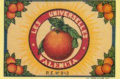 Carcagente Espana Spanish Spain Salero Orange Citrus Fruit Crate Label Print