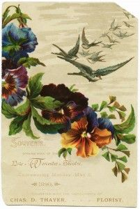 free printable ~ 1890 Victorian trade card New Worcester Theatre, birds and flowers