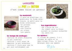 Bouturer le yucca boutures pr paration et sud de la france for Bouture yucca exterieur