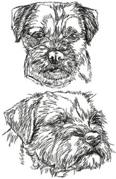 Advanced Embroidery Designs - Border Terrier Set