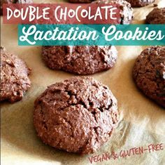 Double Chocolate Lactation Cookie | Delicious Lactation Cookies Recipes That Actually Work | Lactation Cookies Recipe | Increase Breastmilk Supply Fast | https://babycared.com/lactation-cookies-recipes/