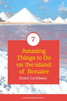Pink lakes and cactus cocktails! Just a few of the amazing things to do on Bonaire #Caribbean #summer #adventure