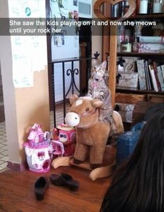 Dump A Day Funny Animals Of The Day - 21 Pics