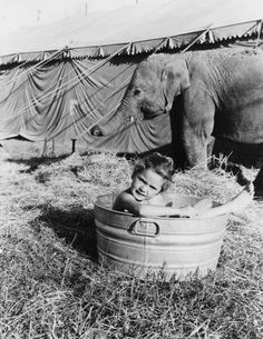 A young girl bathing in a tub outside a circus tent. Los Angeles, 1950s.