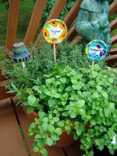 Metal jar lids make great upcycled garden markers. Gloucestershire Resource Centre http://www.grcltd.org/scrapstore/