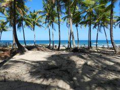 Grande área frente mar à venda em Peninsula de Maraú, Bahia, Brasil. Grande área em frente ao mar. Taipu de Fora é a principal atração da Península de Maraú, com piscinas naturais de águas claras e quilômetros de areia branca e coquerais.