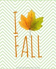 I Love Fall Printable via Nest of Posies