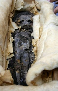 """""""In addition to King Tut's mummy, Carter's team found two mummified fetuses, which have been stored at the University of Cairo since their discovery."""""""