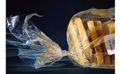 Hyper-realistic painting by Tjalf Sparnaay - Beauty will save Hyper Realistic Paintings, Realistic Drawings, Art Hyperréaliste, Tjalf Sparnaay, Hyperrealistic Art, Food Painting, Dutch Artists, Still Life Art, Realism Art
