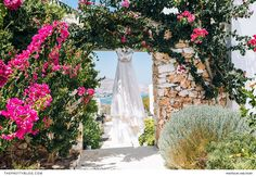 A destination wedding, filled with tradition and love, at their family's house in Greece. Greek Islands, Greece, Destination Wedding, Celebration, Traditional, Wedding Dresses, House, Greek Isles, Greece Country