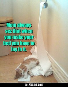Mom Always Sez That When You Make Your Bed...