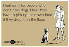 I feel sorry for people that don't have dogs