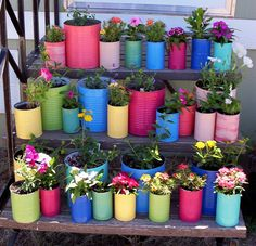 """I painted the tin cans over the winter & waited for Spring.  I used outdoor """"Patio Paint"""" and a clear sealer to prevent rust.  Now if the hot, West Texas wind just won't crisp the plants . . ."""
