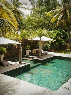 Pool Landscaping Ideas - In addition to a minimalist swimming pool, you can also make a swimming pool. ideas for small yardsBest Pool Landscaping Ideas - In addition to a minimalist swimming pool, you can also make a swimming pool. ideas for small yards Small Swimming Pools, Swimming Pools Backyard, Swimming Pool Designs, Small Pools, Lap Pools, Indoor Pools, Indoor Swimming, Tropical Pool Landscaping, Backyard Pool Designs