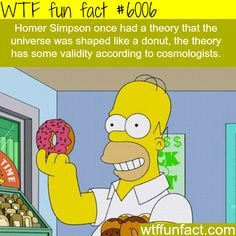 Homer Simpson's theory about the shape of the universe - WTF fun facts #HomerSimpson