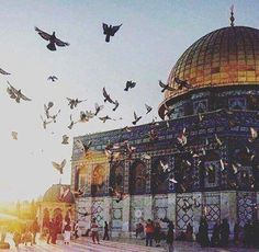 doom of rock Palestine Art, Palestine History, Masjid Haram, Terra Santa, Dome Of The Rock, Islamic Wallpaper, Mecca Wallpaper, Beautiful Mosques, Islamic Art Calligraphy