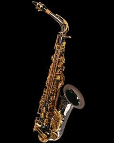This is Ethan's Alto Sax.  Cannonball A5-BL Big Bell Stone Series Pro Alto Sax - black nickel finish/gold lacquer keys