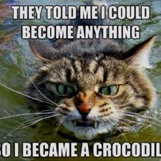 Crococat