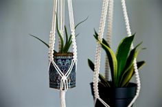 Macrame Plant Hanger 25 Knotted Natural White Cotton