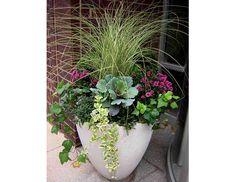 flower pot arrangeing | flower pot