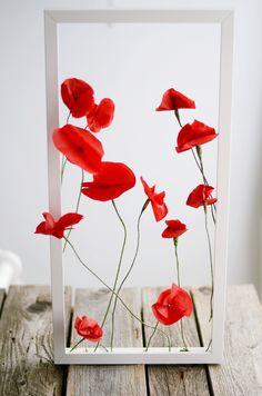 Mohnblumen aus Seidenpapier / poppies from tissue paper