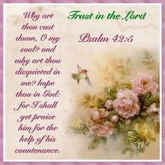 Why art thou cast down, O my soul? and why art thou disquieted in me? hope thou in God: for I shall yet praise him for the help of his countenance. Psalm 42:5