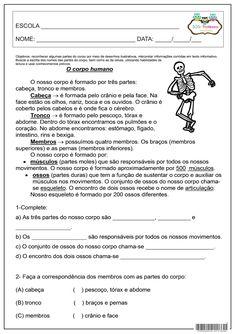 SOS PROFESSOR-ATIVIDADES: O corpo humano