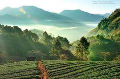 meemail mail dee dee: Beautiful Thailand