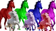 Learn Colorful Songs Horse Nursery Rhymes For Children Kids Finger