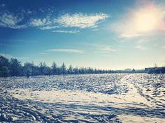 On instagram by yosewa #landscape #contratahotel (o) http://ift.tt/1WtNViH Expo Plaza  #hannover #hanover #ilovehannover #hannoverstagram #hannoververliebt #igershannover #thisishannover #hannoverlife #niedersachsen #meinniedersachsen #deutschland #meindeutschland #snow #schnee #weiss #white #expo #expoplaza #tree #bäume #expohannover #landschaft