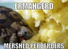 Ermahgerd, mershed perderders! Yeah, this is pretty much me when I get to eat potatoes....
