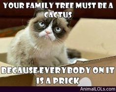 Family tree's - http://www.animallols.com/cats/family-trees/