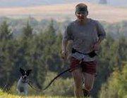 runDOOXrun: 8 Week Training Program for Cani-Cross Beginners