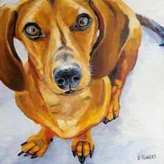 Pet Portraits by Emily Flowers / Atlanta, GA Wiener Dogs, Mini Dachshund, Animal Faces, Rainbow Bridge, Dachshunds, Pyrography, Animal Paintings, Pet Portraits, Colored Pencils
