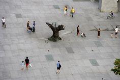 Plaza Dal�