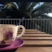 Booking.com : Hotely v destinácii: Trpanj . Rezervujte si hotel ešte dnes! Vacation, Mugs, Tableware, Vacations, Dinnerware, Tumblers, Tablewares, Holidays Music, Mug