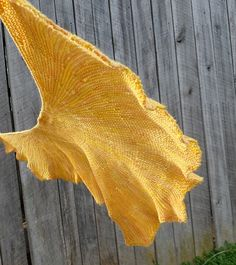 ginkgo biloba shawl Looks like I'm going to look at koigu yarn tomorrow!