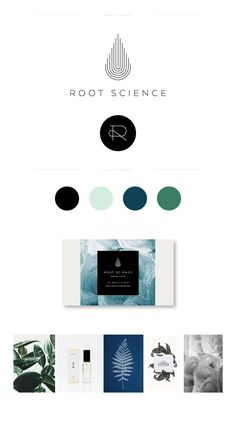 Root Science branding and brand identity by lauren ledbetter Design Brochure, Graphic Design Branding, Typography Design, Logo Design, Lettering, Design Packaging, Label Design, Package Design, Web Design