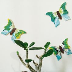 Let these pretty butterflies adorn your wall with life and vibrant colors.