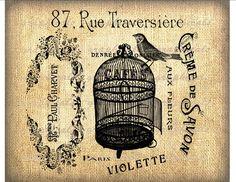 french humor pics antique   awesome graphics - Vintage Paris French ephemera Bird birdcage collage ...