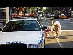 New Yorker Casey Neistat was ticketed $50 for riding his bike outside of a bike lane.  He then made this PSA to show what happens to obedient NYC bicyclists who stay where they belong…  (BTW, I'm laughing with Casey at the inanity of bureaucracy)