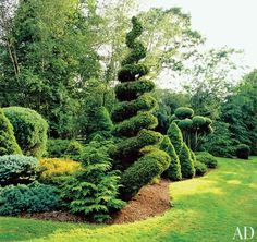 7 Skillful Hacks: Garden Landscaping With Stones Plants tropical garden landscaping.Garden Landscaping Ideas Design garden landscaping with stones plants. Front Yard Landscaping Pictures, Backyard Landscaping, Landscaping Ideas, Topiary Garden, Garden Shrubs, Garden Paths, Topiaries, Landscape Design, Garden Design