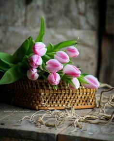 Pink Tulips, Tulips Flowers, Beautiful Flowers, White Roses Wallpaper, Rustic Gardens, Love Rose, Beautiful Morning, Happy Valentines Day, Spring Time