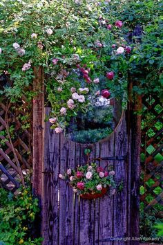 The round mirror on the top part of this gate creates the illusion that you are walking through to another lush part of the garden by reflecting the plants.