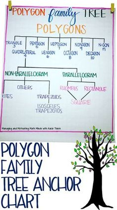 Polygon Family Tree Anchor Chart, Color-coded for helping students visualize the relationships between polygons and quadrilaterals. Maths Guidés, Math Classroom, Teaching Math, Teaching Geometry, Geometry Activities, Math Games, Classroom Decor, Math Charts, Math Anchor Charts
