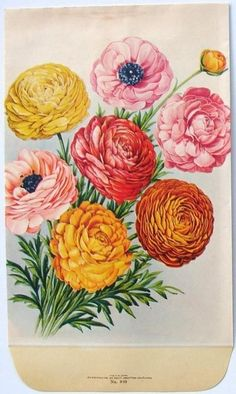 http://tattoo-ideas.us #seed packet look for my new floral tattoo design