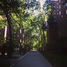 #fall #stuytown #stroll Stuyvesant Town, Roadside Attractions, Places Of Interest, My Town, I Wallpaper, Abandoned Places, Road Trip, Sidewalk, Country Roads